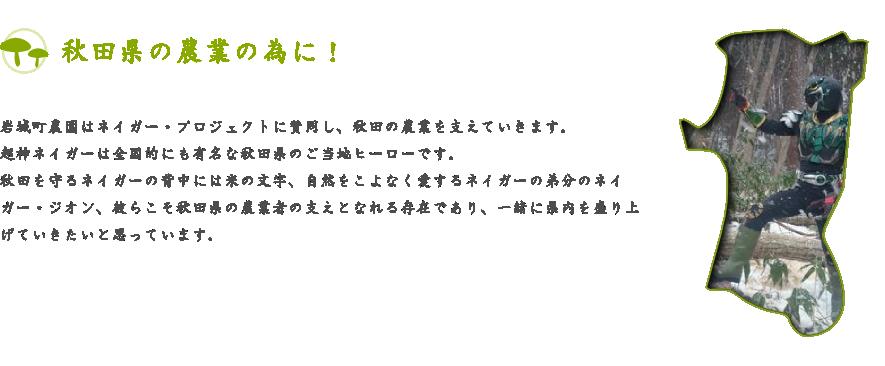 秋田県の農業の為に!岩城町農園はネイガー・プロジェクトに賛同し、秋田の農業を支えていきます。超神ネイガーは全国的にも有名な秋田県のご当地ヒーローです。秋田を守るネイガーの背中には米の文字、自然をこよなく愛するネイガーの弟分のネイガー・ジオン、彼らこそ秋田県の農業者の支えとなれる存在であり、一緒に県内を盛り上げていきたいと思っています。