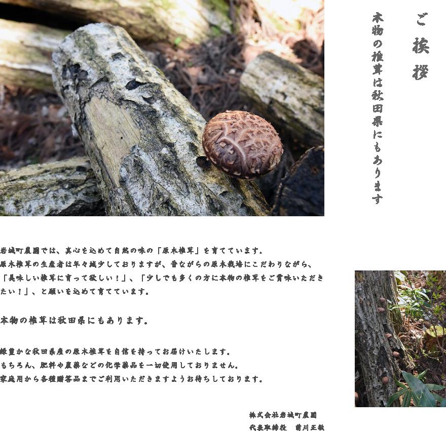 岩城町農園では、真心を込めて自然の味の「原木椎茸」を育てています。原木椎茸の生産者は年々減少しておりますが、昔ながらの原木栽培にこだわりながら、「美味しい椎茸に育って欲しい!」、「少しでも多くの方に本物の椎茸をご賞味いただきたい!」、と願いを込めて育てています。本物の椎茸は秋田県にもあります。緑豊かな秋田県産の原木椎茸を自信を持ってお届けいたします。もちろん、肥料や農薬などの化学薬品を一切使用しておりません。家庭用から各種贈答品までご利用いただきますようお待ちしております。株式会社 岩城町農園 代表取締役 前川正敏