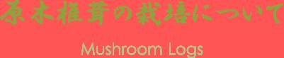 原木椎茸について